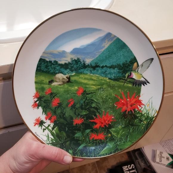 Hummingbird Collectors Plate